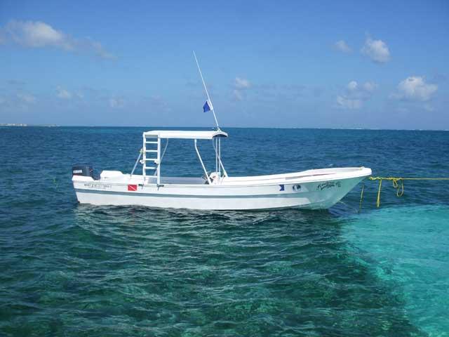 Puerto morelos villas snorkel fish dive the great for Puerto morelos fishing