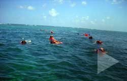 Puerto Morelos Villas guest can go snorkeling with Almost Heaven Adventures
