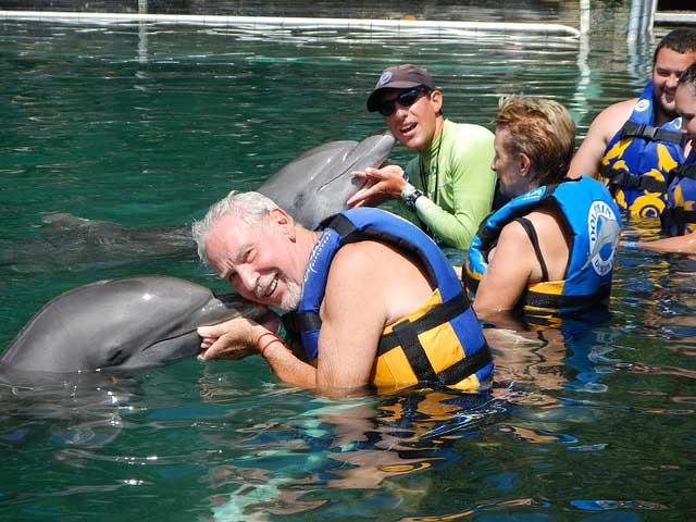 Puerto Morelos Dolphin Swimming